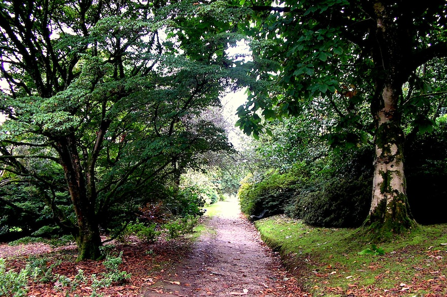 2006 - The path - Lanhydrock, England