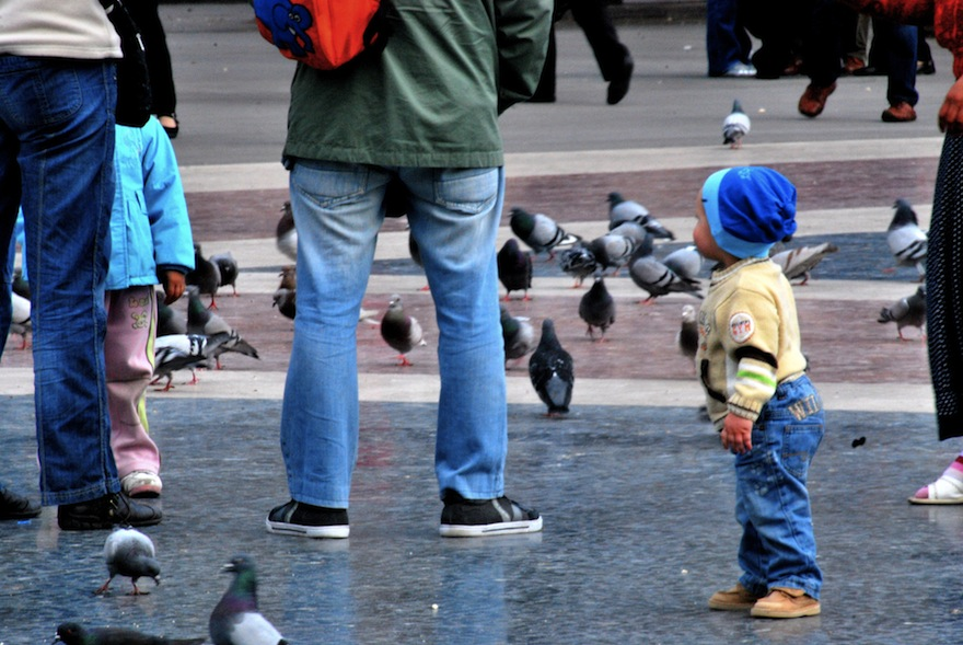 Baby&Pigeons – Miscellaneous