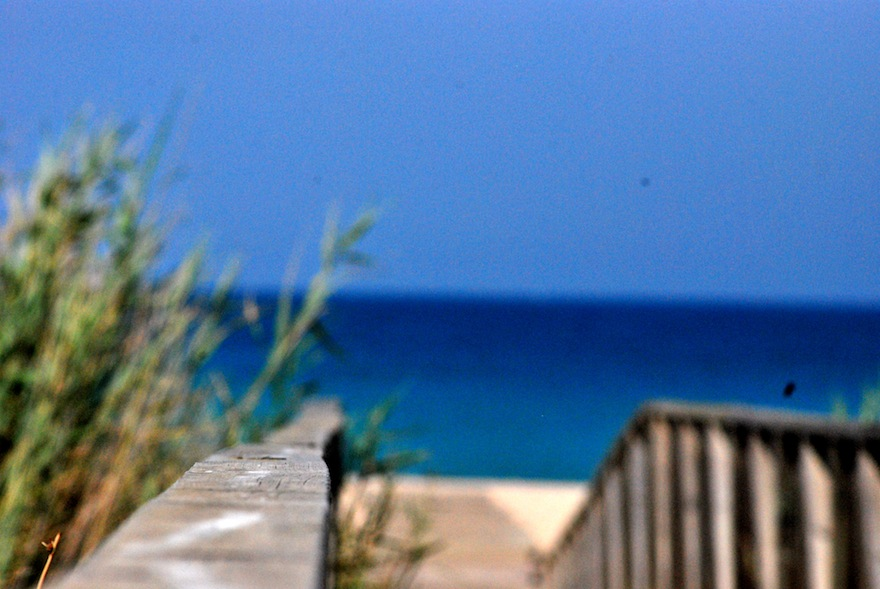 El Palmar unfocused – Miscellaneous