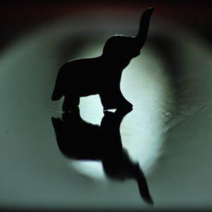 2011 - Elephant silhouette - Malaga, Spain
