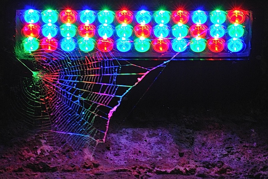 Disco spider – Miscellaneous