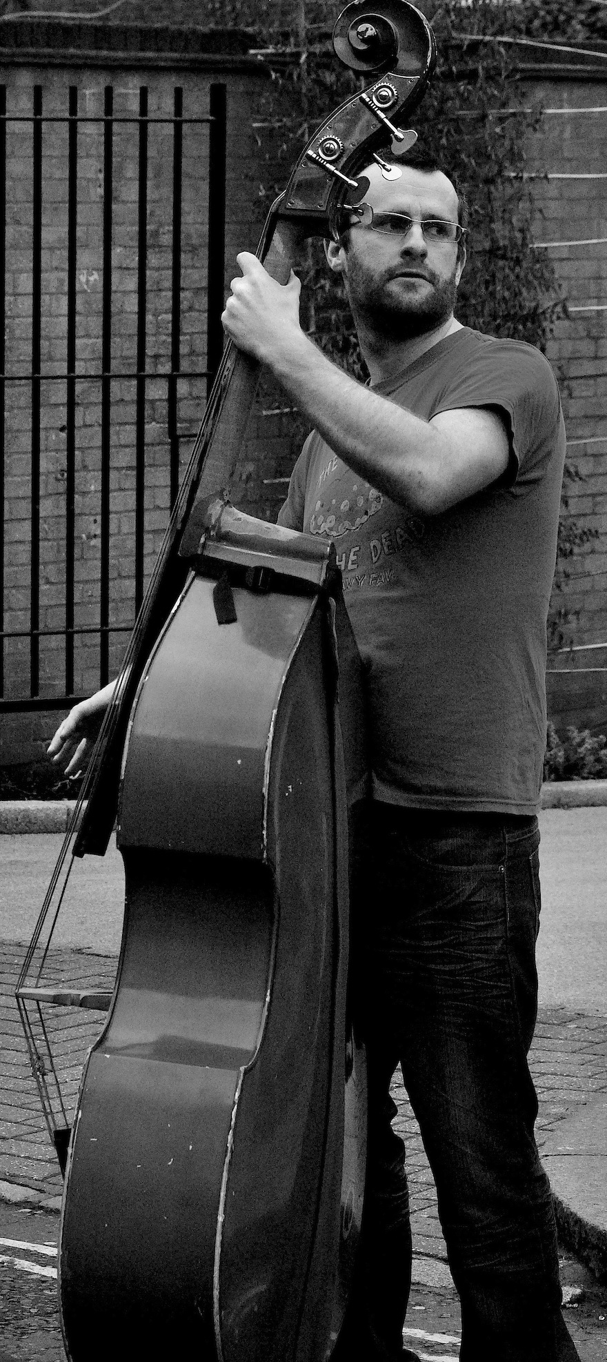 Man playing the double bass – Music