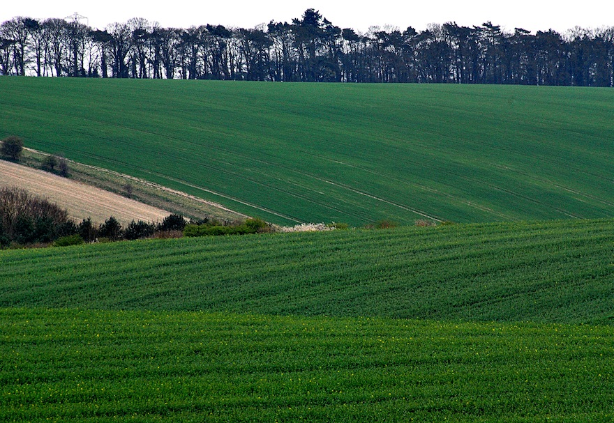 2012 - Green scale countryside - Amesbury, England