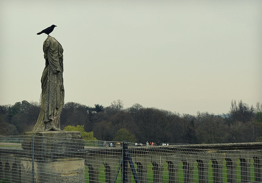 2014 - You've put a crow on its head - London, England